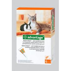 Bayer Advantage 40 (Адвантейдж) капли п\п для котов до 4кг.
