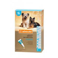 Bayer Advocat 4-10кг. (Адвокат) капли п\п для собак 1мл.